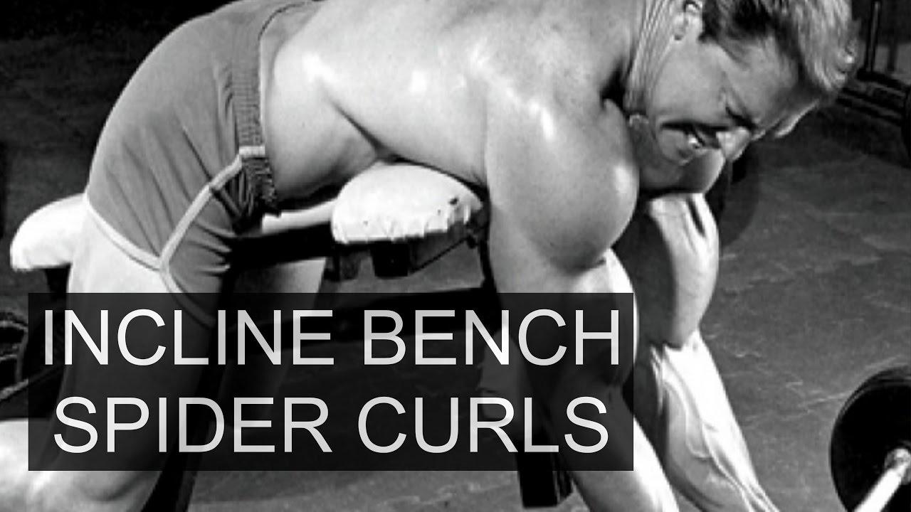 Spider Curls Incline Bench Part - 41: Spider Curls On Incline Bench