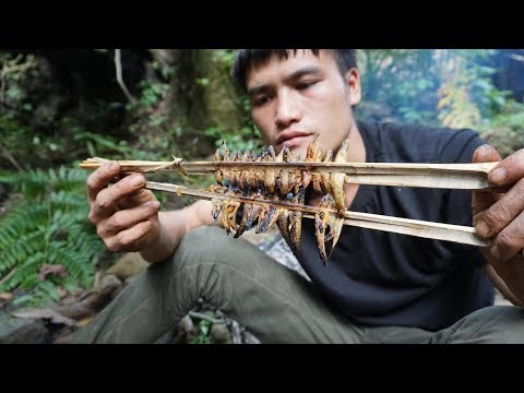 Survival Instinct: How to stop the flow, catch and cook