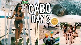 CABO DAY 3! - Petting A Seal, Meeting Viewers, & Going on a Yacht!