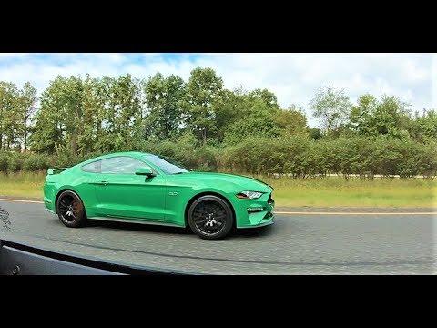 2019 Mustang GT vs 2018 EcoBoost - Highway Pulls!!