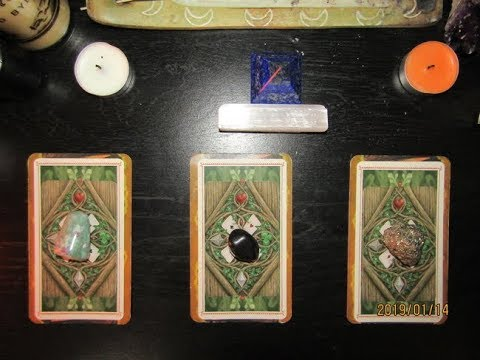 What Is Your Immediate Future?🕵️Pick A Card - Tarot Reading
