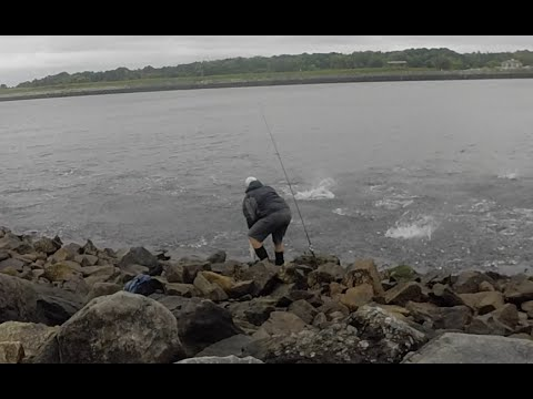 Cape cod canal striped bass fishing a must see blitz for Cape cod canal fishing report
