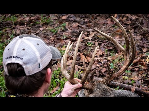 2 Bucks Down - Rifle Deer Hunting In Tennessee