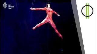 A világhír felé - a cirkusz új csillaga