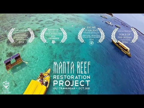 Manta Reef Restoration Project - Gili Island - Indonesia
