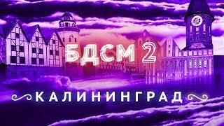 Download Прогулка с мэром Калининграда | Он вам не Кёнигсберг! Mp3 and Videos