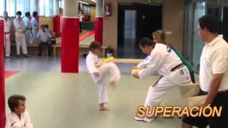 Gimnasio Taekwondo Park - Madrid
