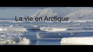 SP2020Aut - # 3.3. - Maéva Cortier - La vie en Arctique