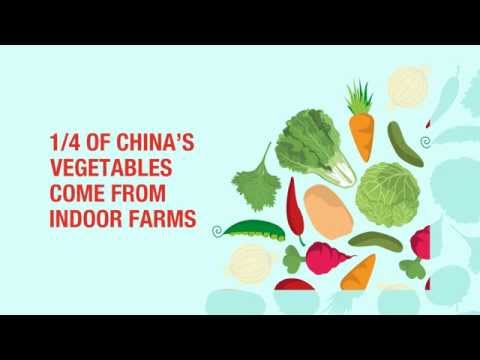 China's Indoor Agriculture Industry