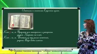 Омонимы и синонимы