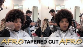 TAPERED CUT STYLE / Afro Hair