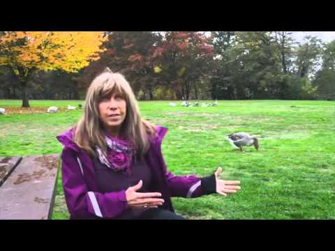Gail Davis on Eating with Compassion
