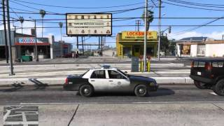 Grand Theft Auto V Online Role-playing
