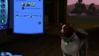 Создание собаки в игре sims 3.