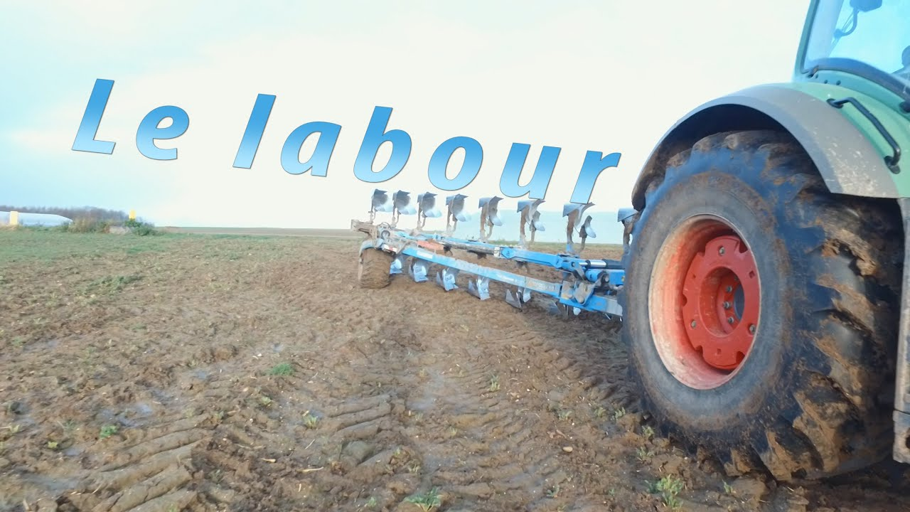 Download Le labour
