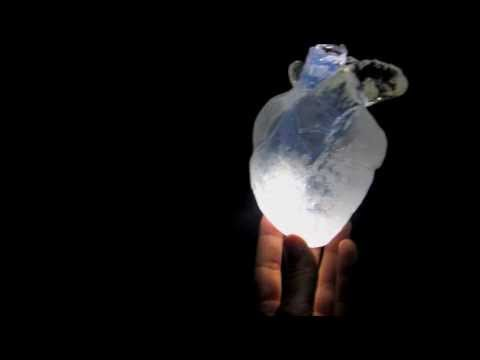 Amy Jorgensen The Heart Field Installation.m4v