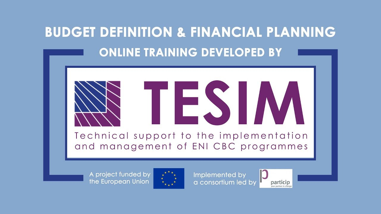 tesim online learning - budget definition and financial planning