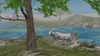 New Online Game, Wild Animals Online making video. First