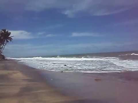 Beach Srilanka @ ocean flower resort