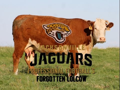 The Jacksonville Jaguars: Professional Football's Forgotten Lolcow