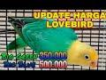 Update Terbaru Harga Lovebird  Mp3 - Mp4 Download