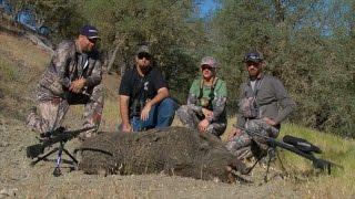 California Monster Hog Hunting huntsmanoutfitters.com