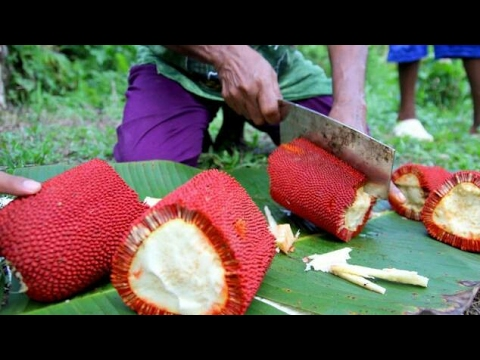 Wow! Buah yang Hanya Tumbuh di Indonesia Ini Jadi Buruan Negara - Negara di Dunia!