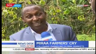 Miraa farmers\' cry: Miraa research centers to beestablished