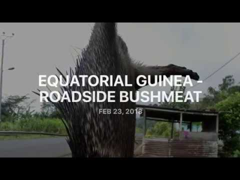 Equatorial Guinea - Bush Meat on Roadsides