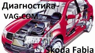 Диагностика, считывание ошибок VAG-COM на примере Skoda Fabia