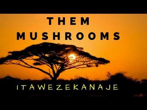 Itawezekanaje - Them Mushrooms Zilizopendwa (HQ)