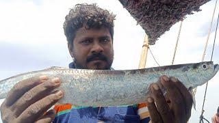 ரசித்து ருசித்து  சாப்பிட வாளை மீன் பொறியல் / Tasty silver scabbard fish fry