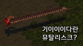 기이이이다란 뮤탈리스크의 등장! - 스타크래프트1