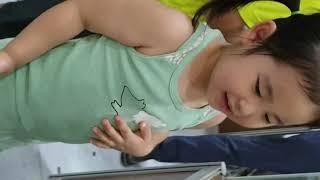 아이와 방학나기 2탄 곤충 파충류 체험전