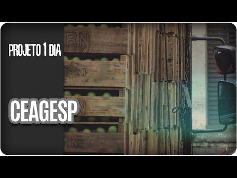 Projeto 1 Dia | CEAGESP | Episódio 2