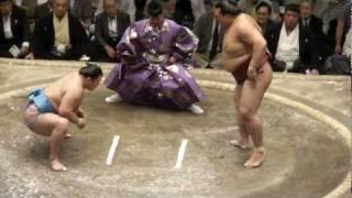 キセノン12勝3敗大関取りへ.
