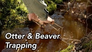 How to Trap Otters and Beavers | MossyOakGamekeepers