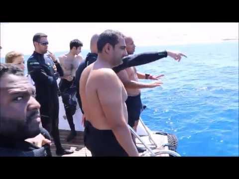 Diving trip to Sharm El-Sheikh September 2016