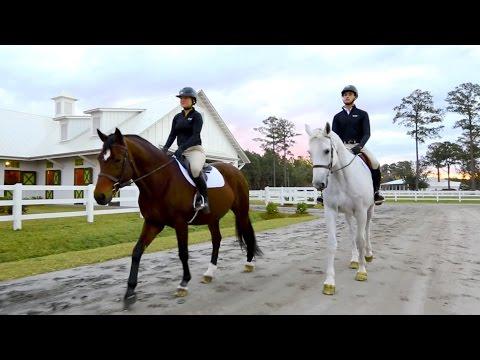 SCAD Equestrian Studies