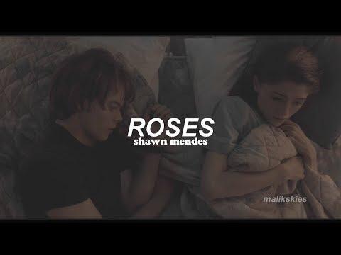 Shawn Mendes - Roses Traducida al español