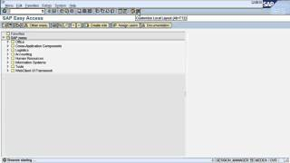 FS1. SAP tutorial: How to navigate in SAP ERP thumbnail