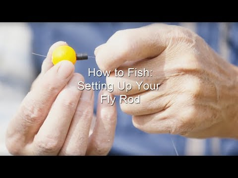 How To Fish: Setting Up Your Fly Rod | GoFishBC