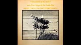 David Thomas and the Pedestrians -The Birds Are a Good Idea