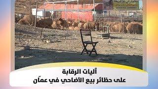 آليات الرقابة على حظائر بيع الأضاحي في عمّان