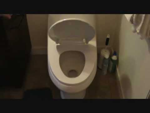 self closing toilet seat lid.  How to install a self closing toilet seat YouTube