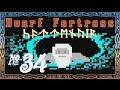 Dwarf Fortress: Cattenvîr - Episode 34 A Dwarf's Best Friend