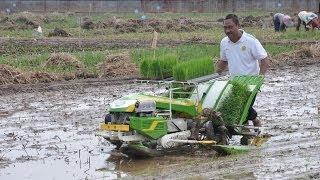 Mesin Tanam Padi Indo Jarwo Transplanter