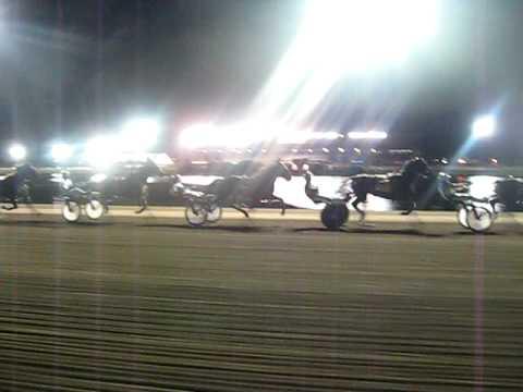 Cal Expo Harness Racing