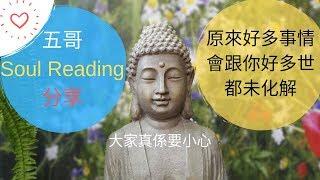 【 身心靈】五哥Soul Reading前世今生+55x5方法總結+兩個超勁身心靈方法