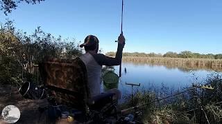 Фидерная рыбалка на озере в лесу Ловля на фидер